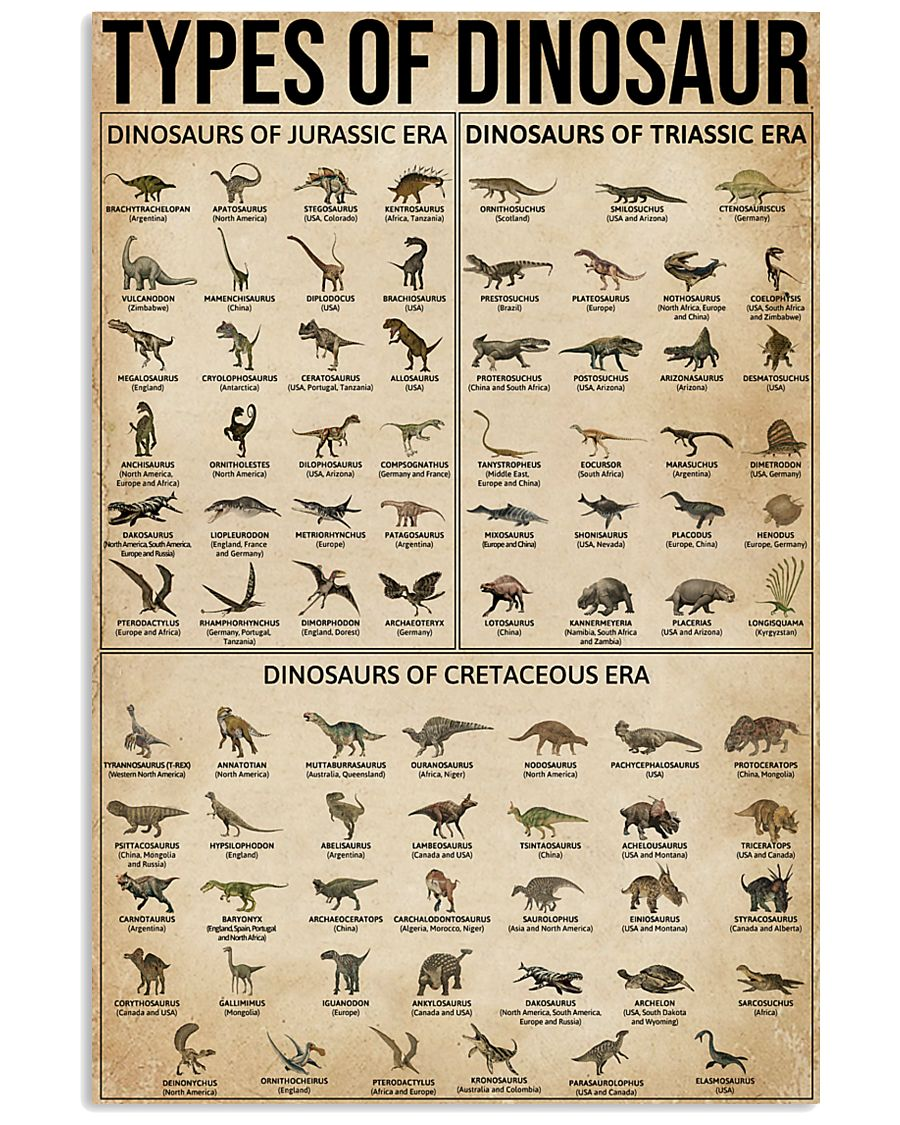 Types Of Dinosaur 16x24 Poster