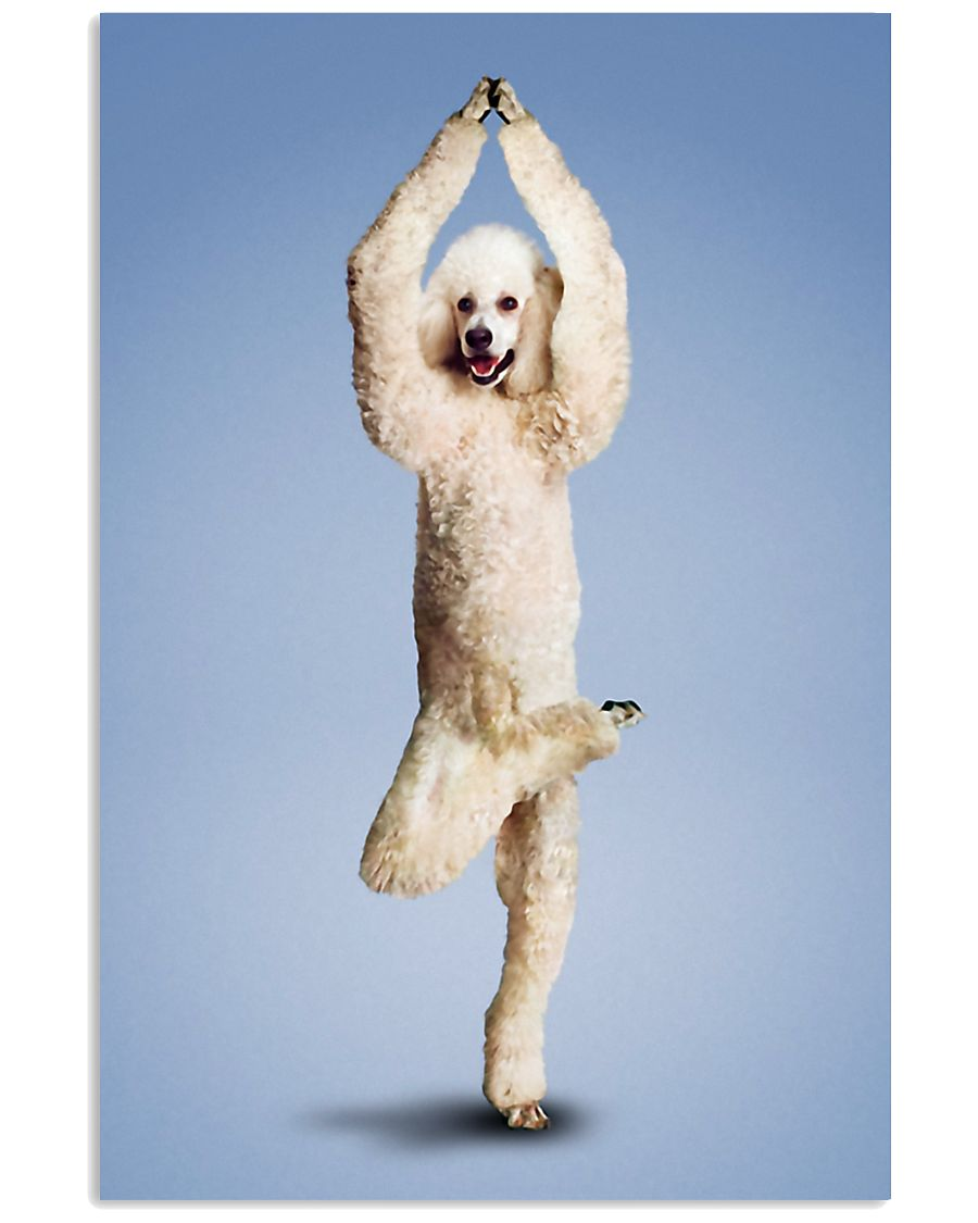 Yoga Pose Poodle 11x17 Poster