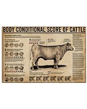 Body Conditional Score Of Cattle 24x16 Poster front