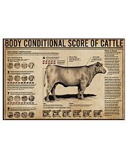 Body Conditional Score Of Cattle 17x11 Poster front