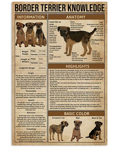 Border Terrier Knowledge