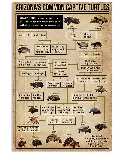 Turtle ID Chart