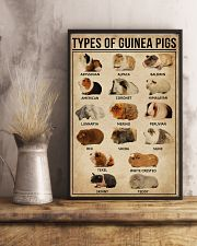 Types Of Guinea Pigs 16x24 Poster lifestyle-poster-3