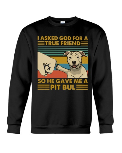 I Asked God For A True Friend Pit Bull