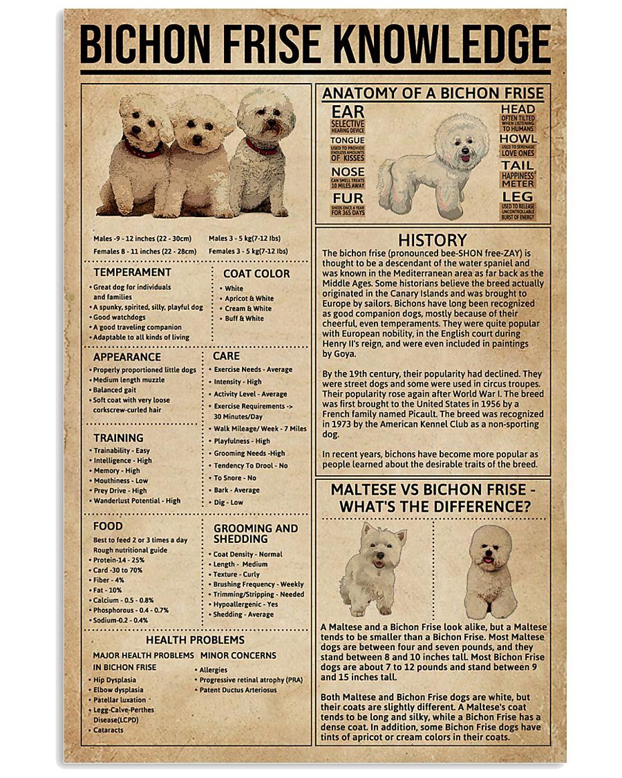 Bichon Frise Knowledge 11x17 Poster