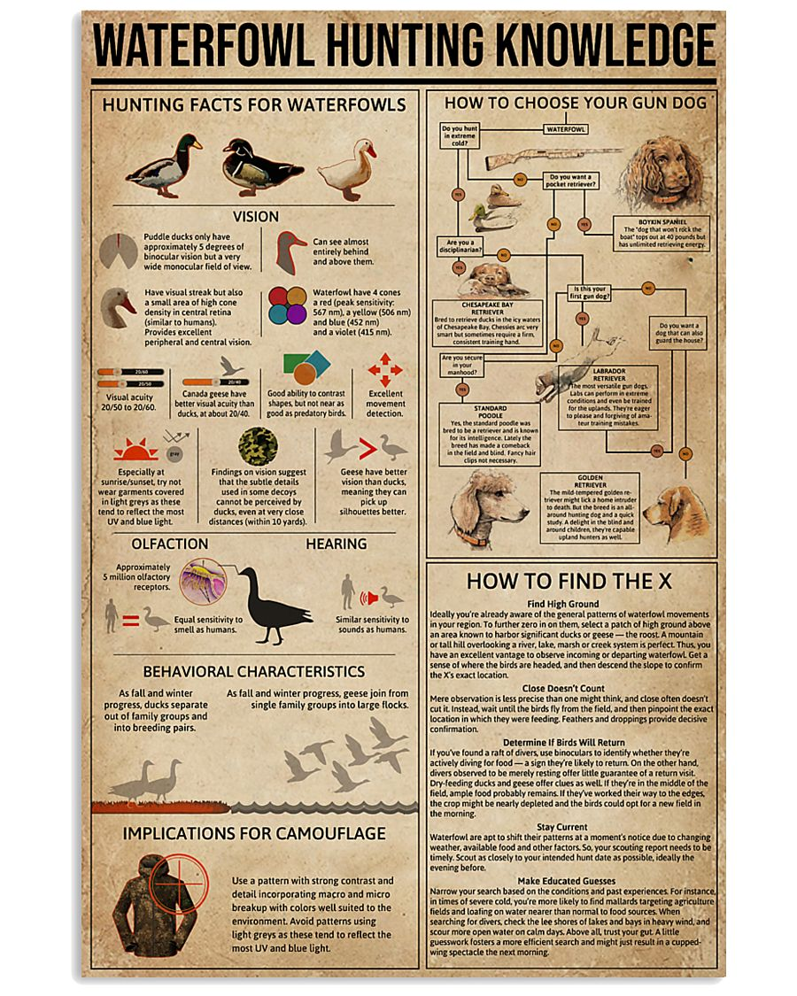 Waterfowl Hunting Knowledge 11x17 Poster