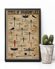Types Of Dragonflies 11x17 Poster lifestyle-poster-8