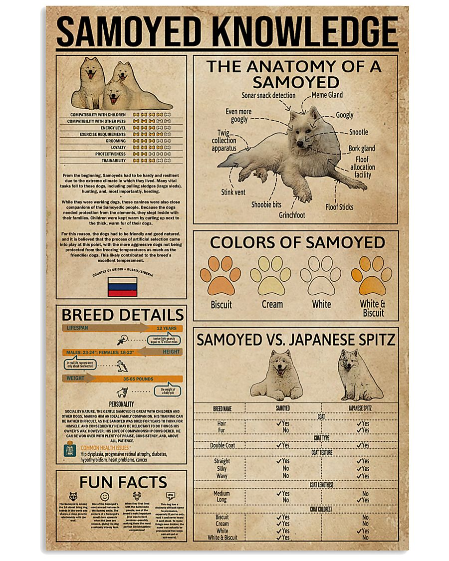 Samoyed Knowledge 11x17 Poster