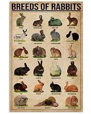 Breeds Of Rabbits 11x17 Poster front