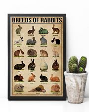 Breeds Of Rabbits 11x17 Poster lifestyle-poster-8