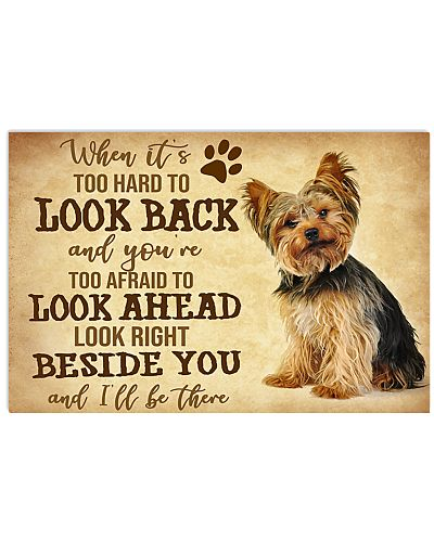 Yorkshire Terrier When It Is Too Hard To Look