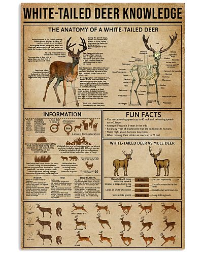 White-Tailed Deer Knowledge