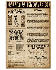 Dalmatian Knowledge 11x17 Poster front