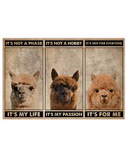 Alpaca It's Not A Phase 24x16 Poster front