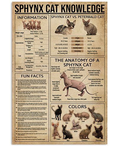 Sphynx Cat Knowledge