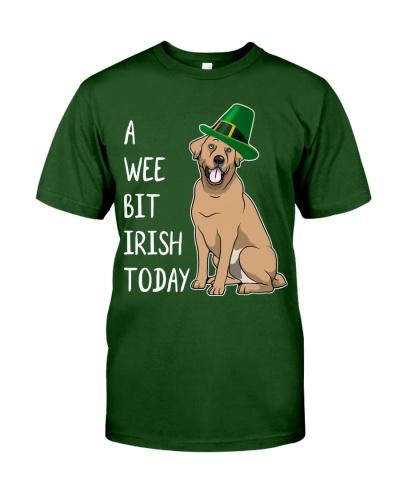 A Wee Bit Irish Today Labrador Retriever