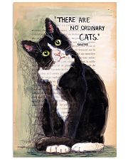 There Are No Ordinary Cats 11x17 Poster front