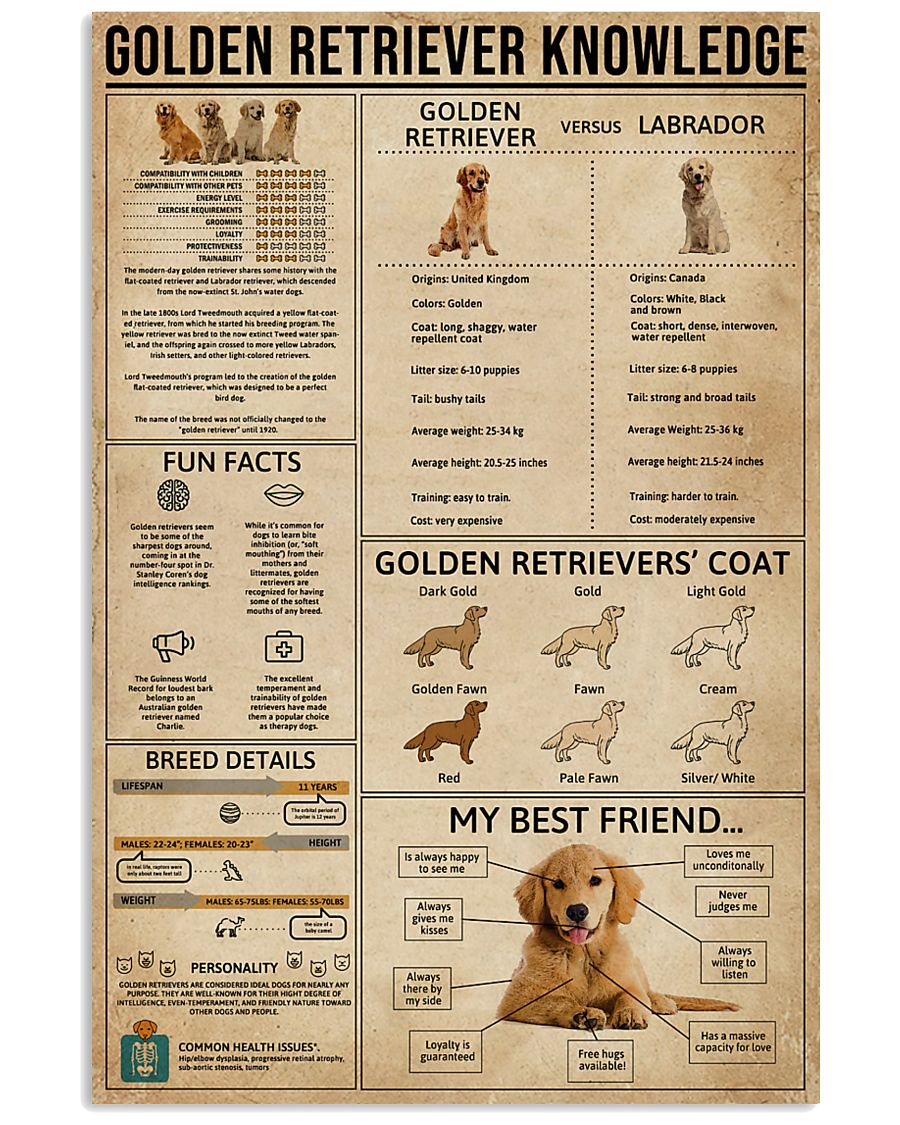 Golden Retriever Knowledge 11x17 Poster
