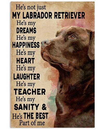 He's My Dreams Labrador Retriever
