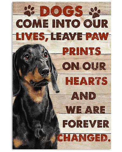 Dachshund Come Into Our Lives