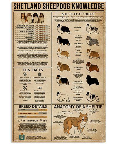 Knowledge Shetland Sheepdog
