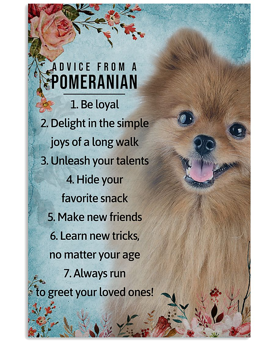 Advice From A Pomeranian 11x17 Poster