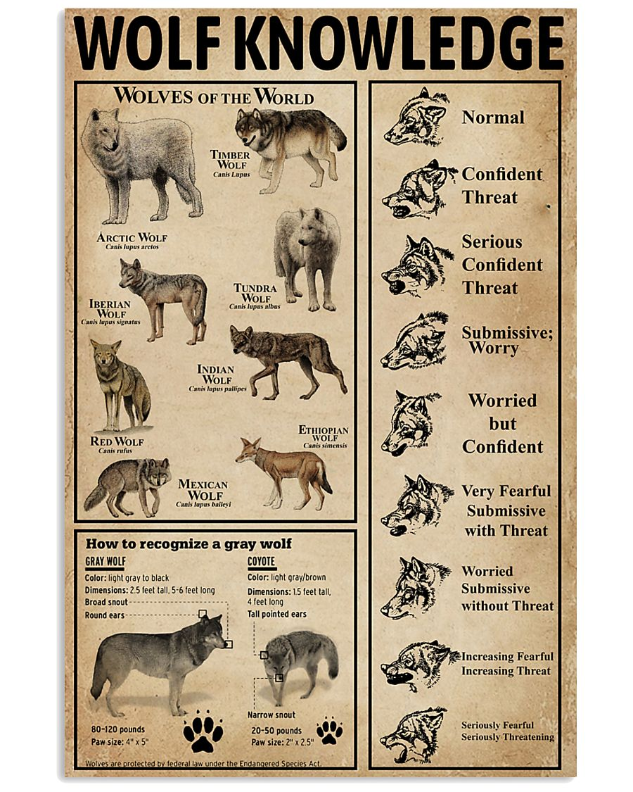 Wolf Type Knowledge 11x17 Poster