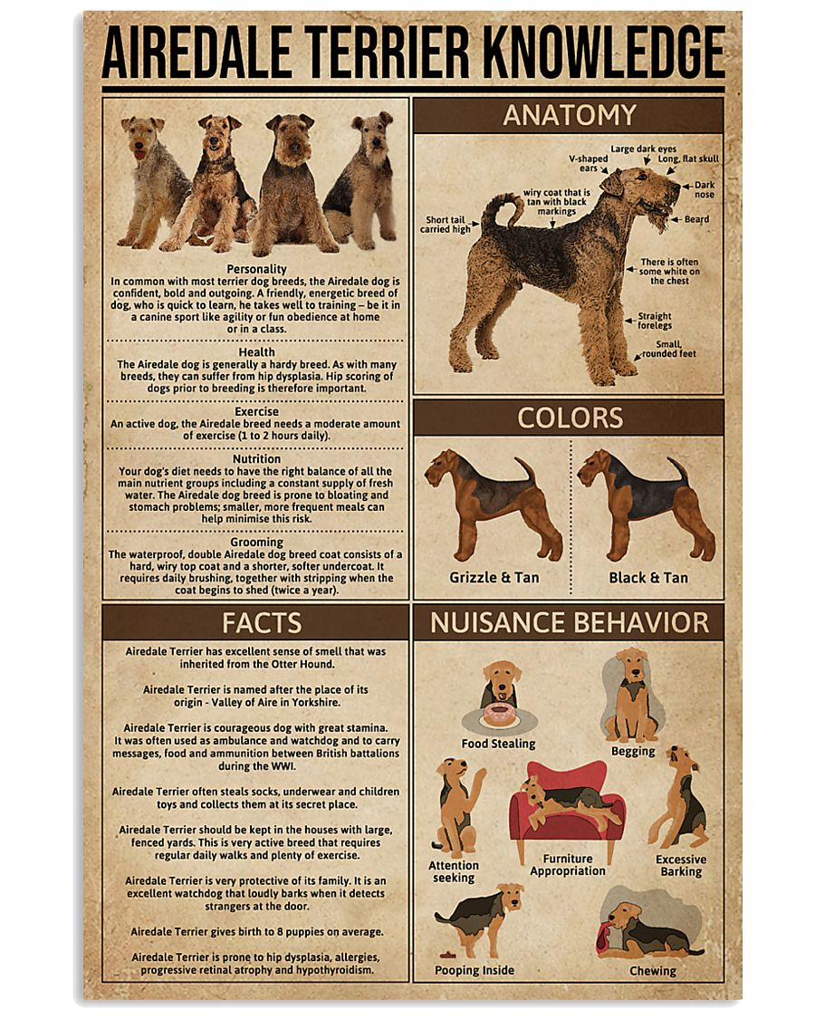 Airedale Terrier Knowledge 11x17 Poster