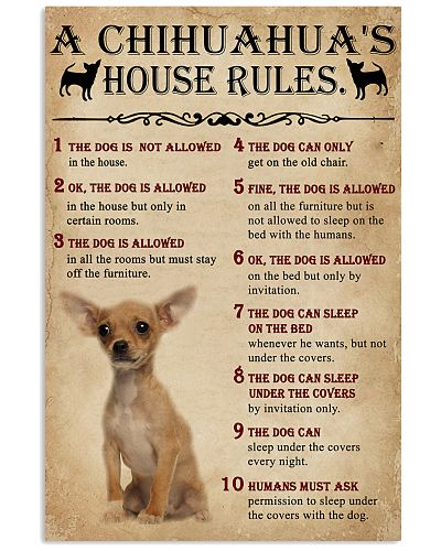 The Dog House Rules A Chihuahua