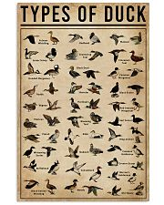 Types Of Duck 16x24 Poster front