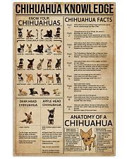 Chihuahua Knowledge Dogs 11x17 Poster front