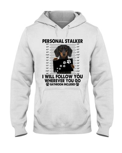 Dachshund Personal Stalker