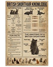 British Shorthair Knowledge 11x17 Poster front