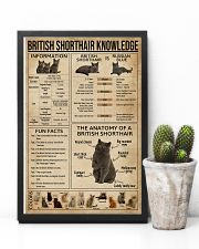 British Shorthair Knowledge 11x17 Poster lifestyle-poster-8