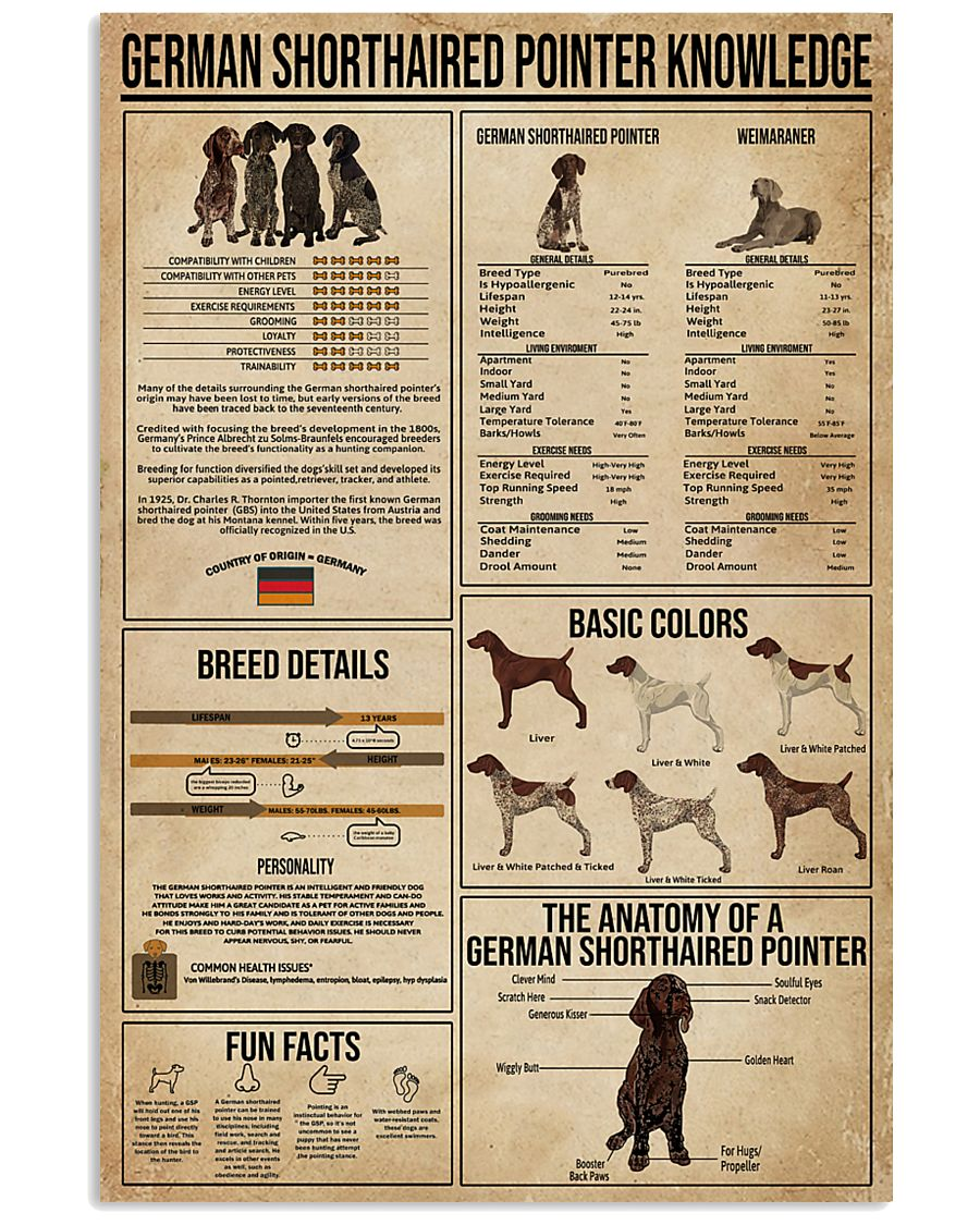 German Shorthaired Pointer Knowledge 16x24 Poster