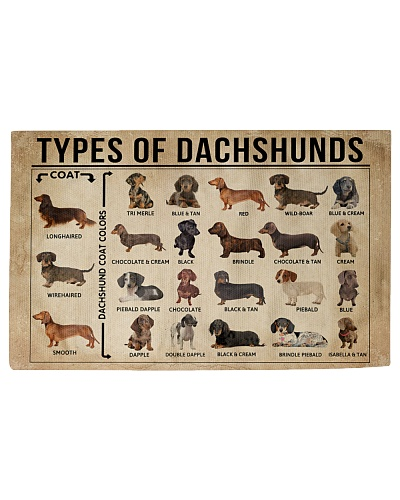 Types Of Dachshunds