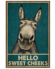 Hello Sweet Cheeks Donkey 16x24 Poster front
