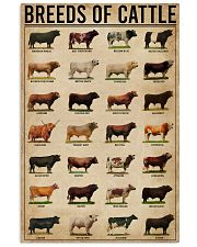 Breeds Of Cattle 16x24 Poster front