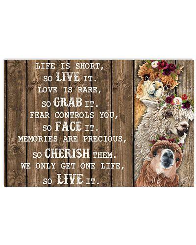 Life Is Short Alpaca