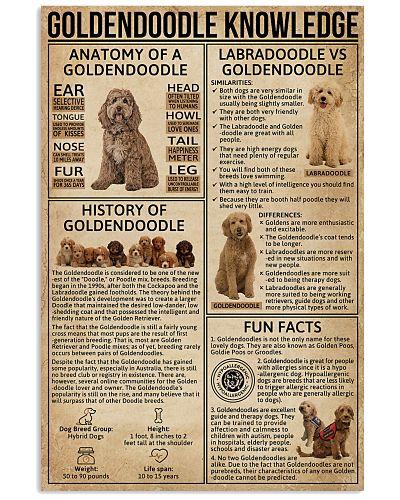 Goldendoodle Knowledge Dog