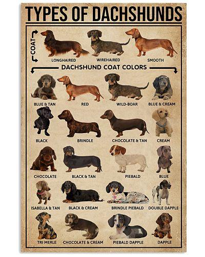 Types Of Dachshunds Dog