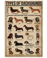 Types Of Dachshunds Dog 11x17 Poster front
