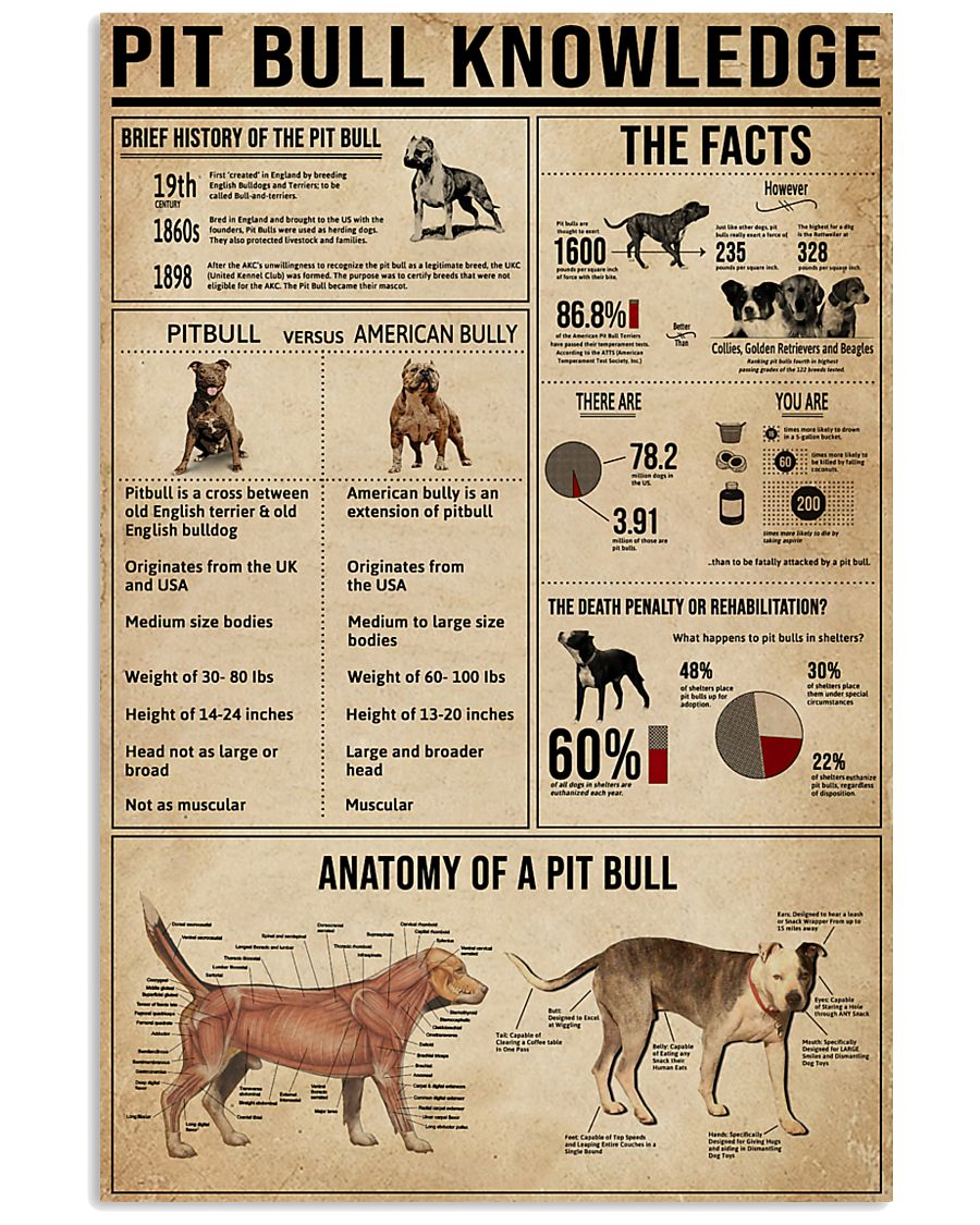 Pit Bull Knowledge 11x17 Poster