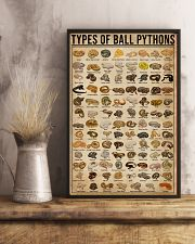 Types Of Ball Pythons 11x17 Poster lifestyle-poster-3