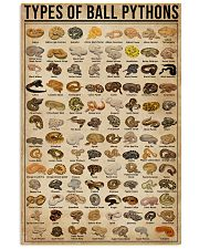 Types Of Ball Pythons 16x24 Poster front