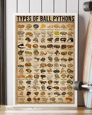 Types Of Ball Pythons 16x24 Poster lifestyle-poster-4