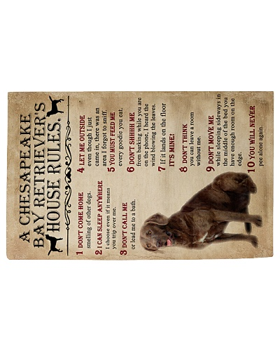 A Chesapeake Bay Retriever's House Rules Rug