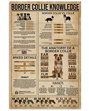 Border Collie Knowledge Dog 16x24 Poster front
