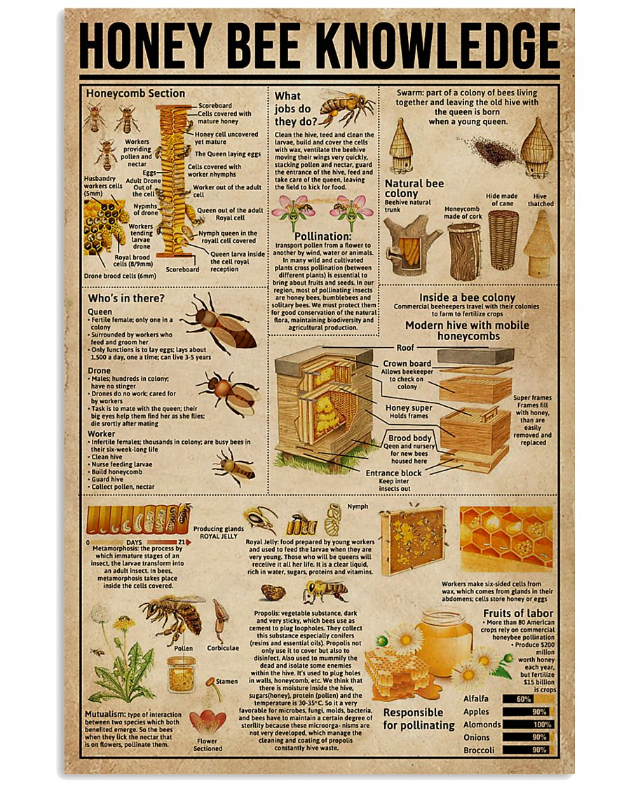 Honey Bee Knowledge Society Life 11x17 Poster