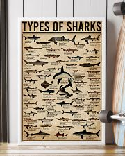 Types Of Shark Animal 16x24 Poster lifestyle-poster-4